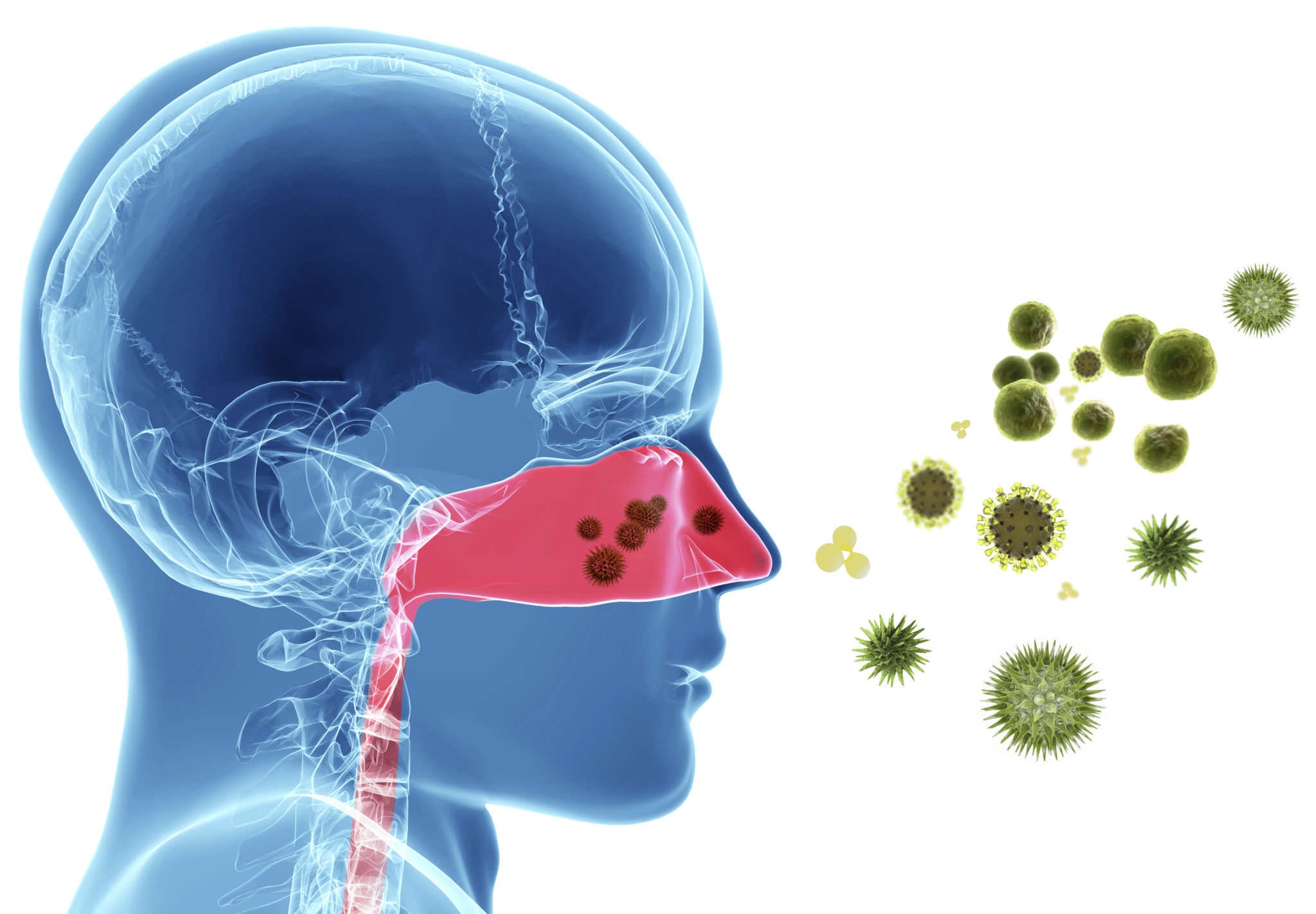 Allergies Overview   Inspire ENT & Pulmonology